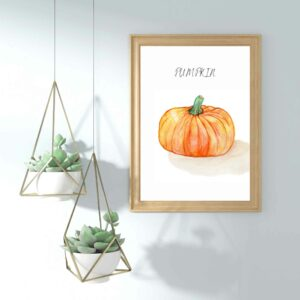 Buntes Gemüse Bilder